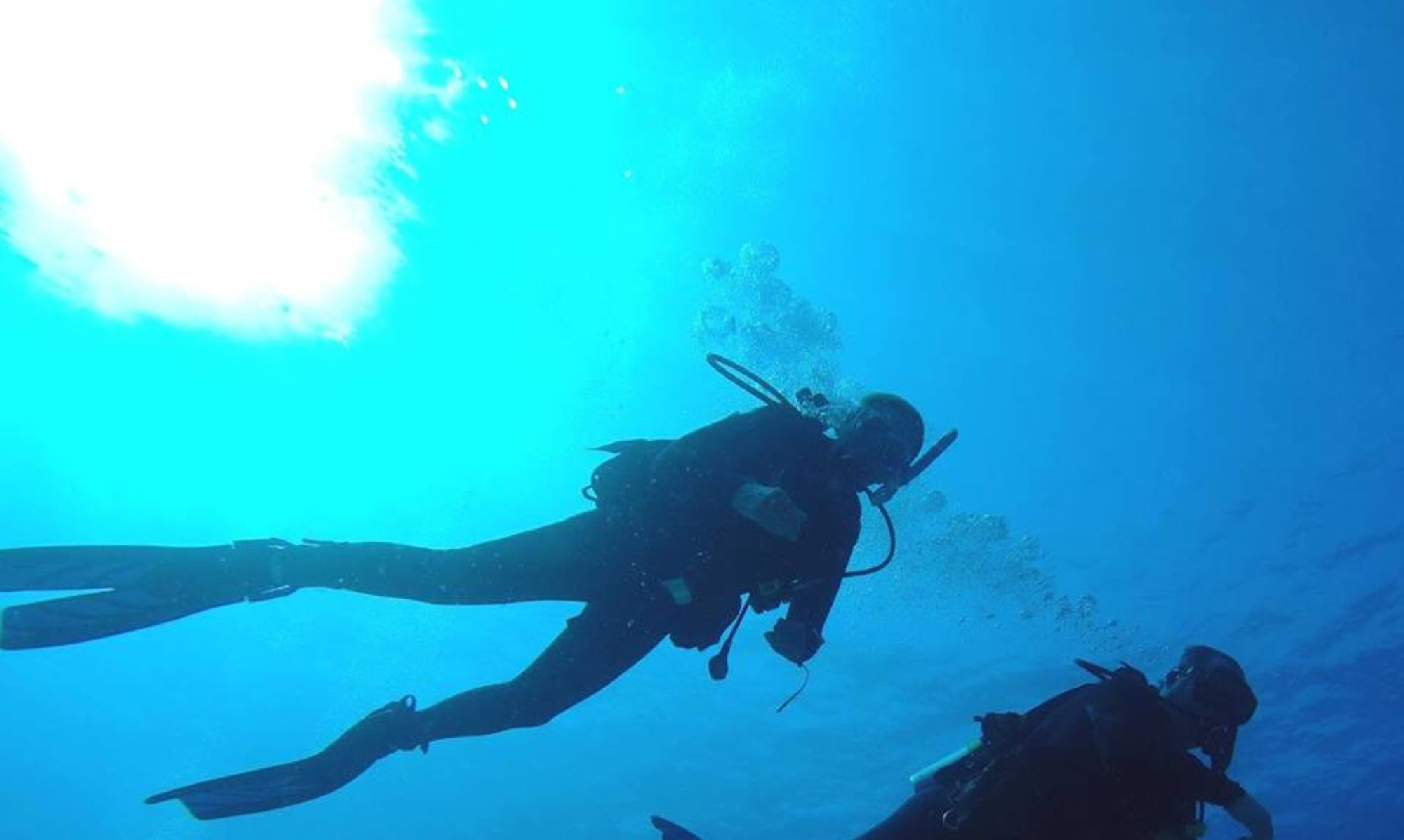 Aloha Dive